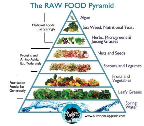 Raw Dog Food Recipes Uk